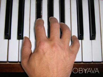 """Даю уроки игры на фортепьяно детям и взрослым (научу """"с нуля""""). Также - подготов. Днепр, Днепропетровская область. фото 1"""