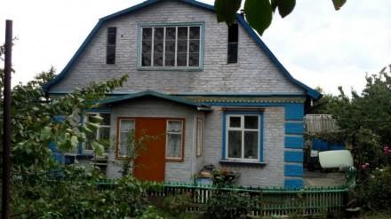 Дом от хозяина. Александрия. фото 1