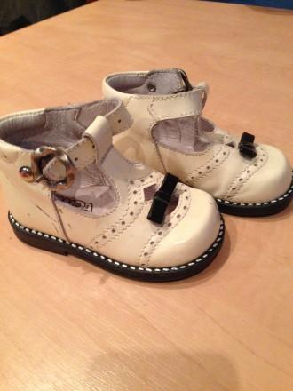 Туфли PANDA, в хорошем состоянии, сделанные в Италии и от туда же привезенные.. Нежин, Черниговская область. фото 4