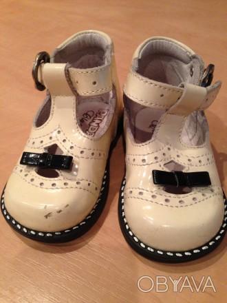 Туфли PANDA, в хорошем состоянии, сделанные в Италии и от туда же привезенные.. Нежин, Черниговская область. фото 1