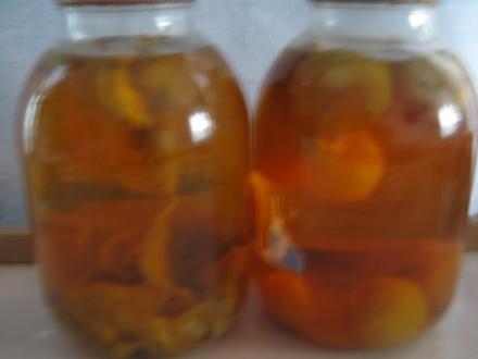 Лечебный гриб Веселка.. Городня. фото 1