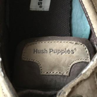 продам макоссины из натурального замша фирменные Оригинал   Hush  Pupples   США . Кропивницкий, Кировоградская область. фото 5