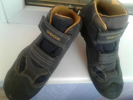 Демесезонные термо ботинки 38 размера. Житомир. фото 1