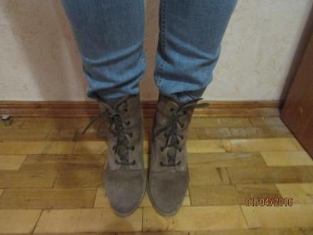 Женские натуральные замшевые ботиночки 38 размера, внутри натуральная кожа. На д. Сумы, Сумская область. фото 3