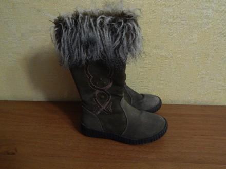 Замшевые сапоги для девочки Arial. Чернигов. фото 1