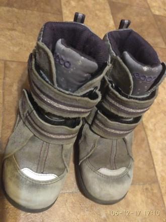 Ботинки зимние Ecco мембрана GoreTex, р.26 ст.16,5 см. Сумы. фото 1