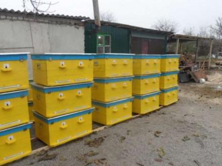 Изготавливаем ульи из дерева любой конструкции и комплектации.. Вознесенск, Николаевская область. фото 2