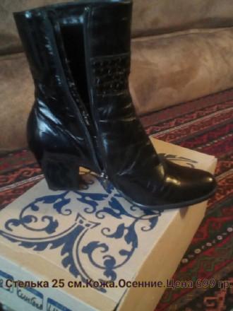 Сапоги 38 размера Запорожье – купить женскую и мужскую обувь на ... 45647119043