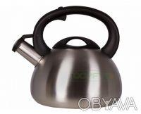 Чайник металлический Tefal C7921014 НОВЫЙ. Днепр. фото 1
