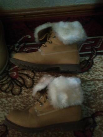 Ботинки 38-39раз. теплые. Херсон. фото 1