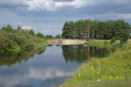 Продам будинок-дача з великою ділянкою в красивому місці, 15 хвилин пішим ходом . Макишин, Черниговская область. фото 9