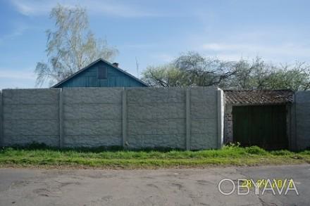 Продам будинок-дача з великою ділянкою в красивому місці, 15 хвилин пішим ходом . Макишин, Черниговская область. фото 1