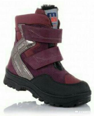 Распродажа зимних  ботинок  турецкой фабрики Минимен 29,35р. Бровары. фото 1