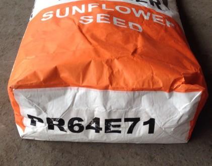 Розпродаж насіння соняшнику під гранстар Піонер PR64e71, P64LE25, P64LE99, P63LE. Харьков. фото 1