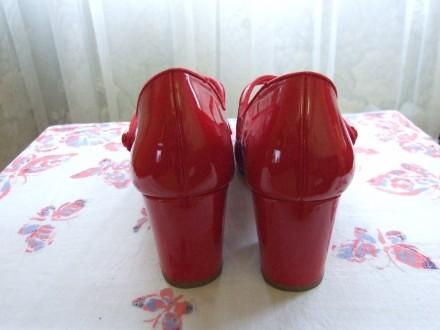 Пять пар женских туфель. В отличном состоянии.Один раз одевались. Красные и борд. Сумы, Сумская область. фото 4
