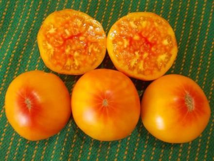 Пропоную насіння томатів, як екзотичних і рідкісних, так і традиційних, поширени. Прилуки, Чернігівська область. фото 9
