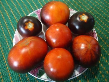 Пропоную насіння томатів, як екзотичних і рідкісних, так і традиційних, поширени. Прилуки, Чернігівська область. фото 5