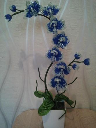 Орхидея из бисера. Ручная работа.. Суми. фото 1