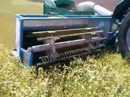 Комбайн для сбора ромашки. Кременчуг. фото 1