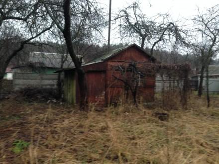 Продам дачу на Старой Подусовке CO Мичурина участок 4 соток,подойдёт под застрой. Старая Подусовка, Чернигов, Черниговская область. фото 4