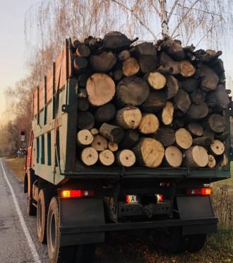 Доставим вам дрова граб, дуб, или акацию, рубаные в укладку (уложенные как на фо. Обухов, Киевская область. фото 6