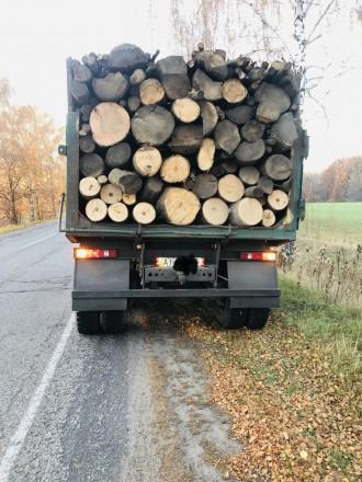 Доставим вам дрова граб, дуб, или акацию, рубаные в укладку (уложенные как на фо. Обухов, Киевская область. фото 4