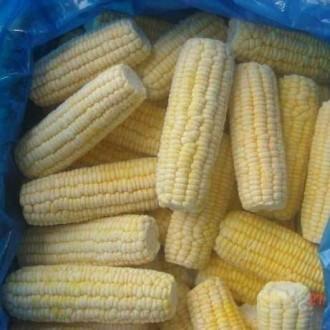 Заморожена, бланширована цукрова кукурудза початки ящик 10 кг. Киев. фото 1