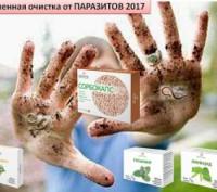 Усиленная сезонная очистка от паразитов. Днепр. фото 1