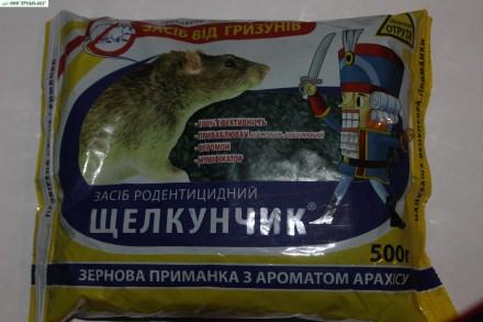 Щелкунчик-500 г.ЗЕРНО. Бердянск. фото 1
