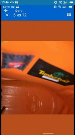 Timberland  10061 новые оригинал. Везу из США. Так же черные скоро в наличии.. Киев, Киевская область. фото 5