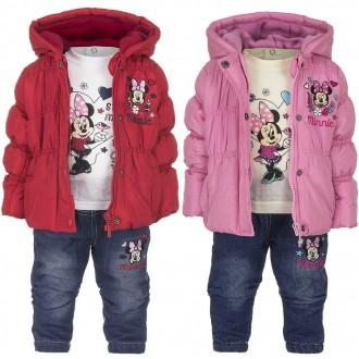 Костюм, теплый, демисезонный, куртка, штаны, кофта, Disney.. Винница. фото 1