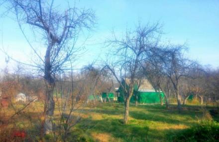 Дачный участок в Пролетарском Гае площадью 6 соток. Чернигов. фото 1