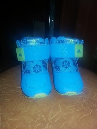 Ботинки Адидас Adidas 21 р.. Харьков. фото 1