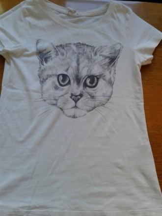Продается футболка 100% коттон Турция. Киев. фото 1
