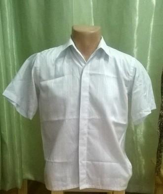 Рубашка Ricardo Ricco 096. Ладыжин. фото 1