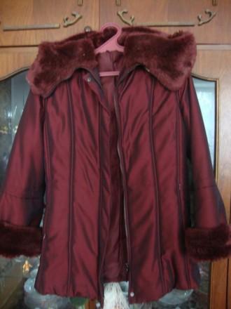 Зимняя куртка. Житомир. фото 1
