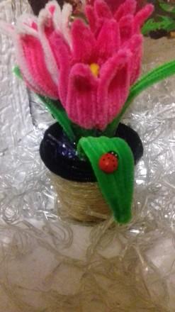 Продам или изготовлю на заказ декоративные тюльпаны из синельной проволки. Выгля. Черкассы, Черкасская область. фото 4