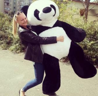 Плюшевая панда. Кропивницкий. фото 1