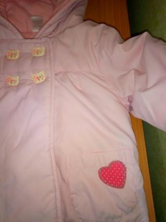 Суперская оригинальная курточка Next, на малышку 3-6 месяцев, демисезонная, на т. Киев, Киевская область. фото 5