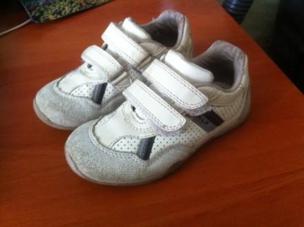Туфли кроссовки. Сумы. фото 1
