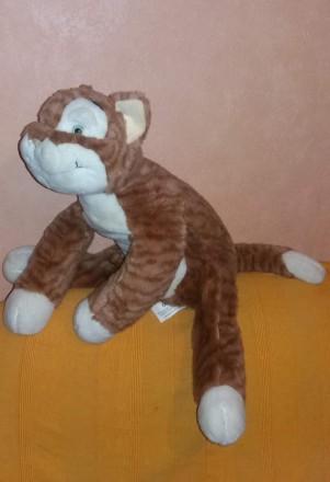 Большая мягкая игрушка кот-экзот (50 см).. Киев. фото 1