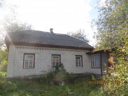 Дом дача с.Красное. Чернигов. фото 1