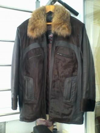Куртка мужская кожаная с воротником из меха енота.. Біла Церква. фото 1