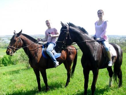 Индивидуальные и групповые прогулки на лошадях — это замечательный способ отдохн. Харьков, Харьковская область. фото 2