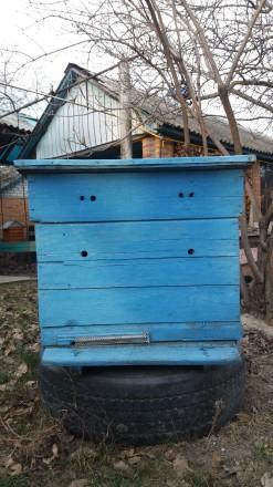 Улики для пчёл,состояние-б\у.. Кременчуг, Полтавская область. фото 2