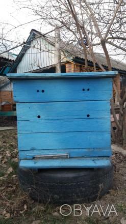 Улики для пчёл,состояние-б\у.. Кременчуг, Полтавская область. фото 1