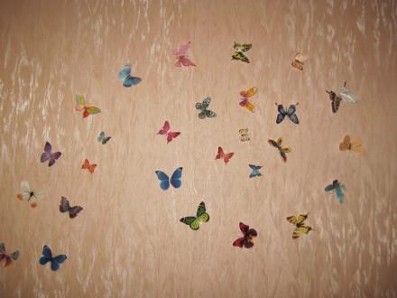 Бабочки - декор на стену. Сумы. фото 1