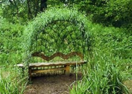 Виберіть місце для відпочинку і спорудження альтанки діаметром 2- 6 метрів(форма. Львов, Львовская область. фото 4
