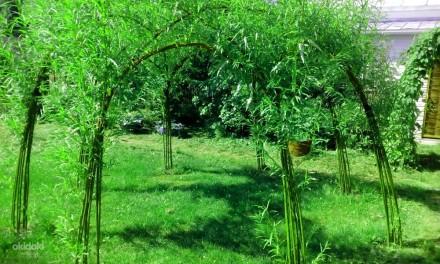 Виберіть місце для відпочинку і спорудження альтанки діаметром 2- 6 метрів(форма. Львов, Львовская область. фото 8