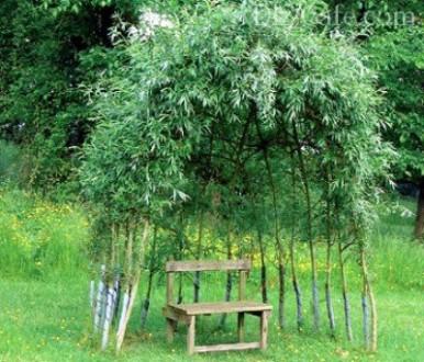 Виберіть місце для відпочинку і спорудження альтанки діаметром 2- 6 метрів(форма. Львов, Львовская область. фото 9